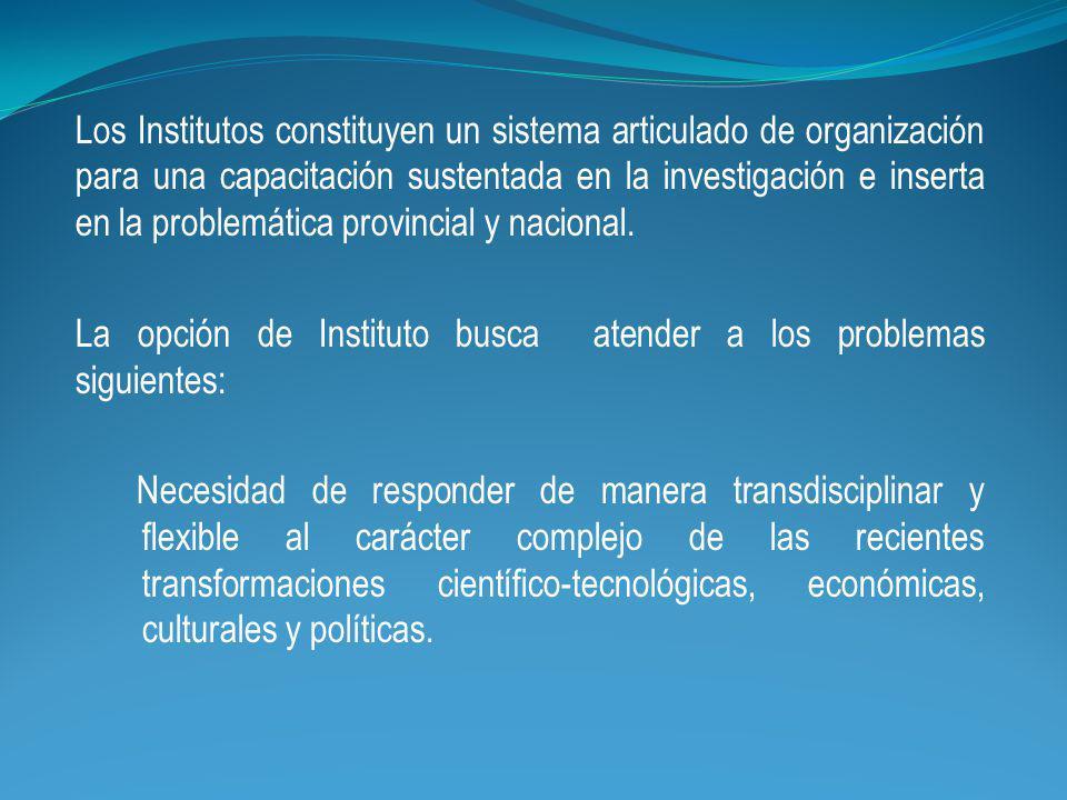 Los Institutos constituyen un sistema articulado de organización para una capacitación sustentada en la investigación e inserta en la problemática provincial y nacional.