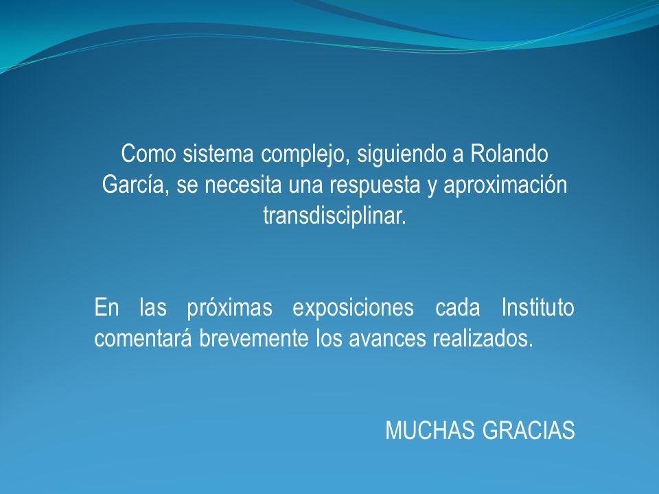 Como sistema complejo, siguiendo a Rolando García, se necesita una respuesta y aproximación transdisciplinar.