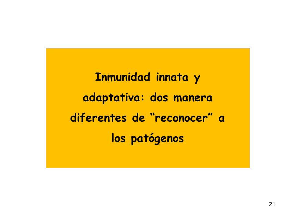 21 Inmunidad innata y adaptativa: dos manera diferentes de reconocer a los patógenos