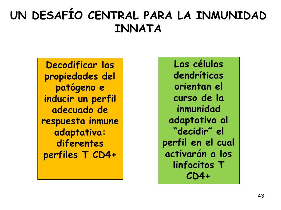 UN DESAFÍO CENTRAL PARA LA INMUNIDAD INNATA 43 Decodificar las propiedades del patógeno e inducir un perfil adecuado de respuesta inmune adaptativa: d