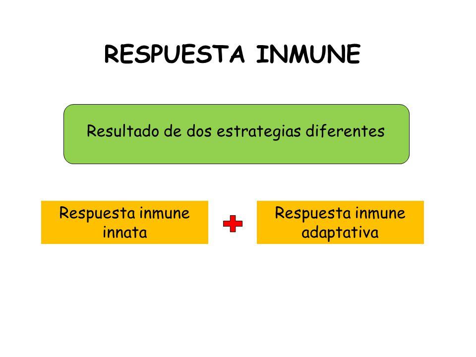 RESPUESTA INMUNE Resultado de dos estrategias diferentes Respuesta inmune innata Respuesta inmune adaptativa