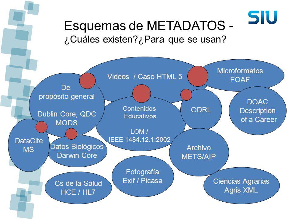 Esquemas de METADATOS - ¿Cuáles existen?¿Para que se usan? Cs de la Salud HCE / HL7 Fotografía Exif / Picasa Videos / Caso HTML 5 Contenidos Educativo
