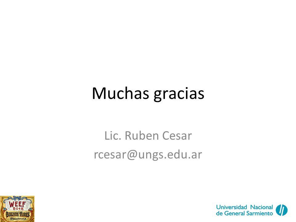 Muchas gracias Lic. Ruben Cesar rcesar@ungs.edu.ar