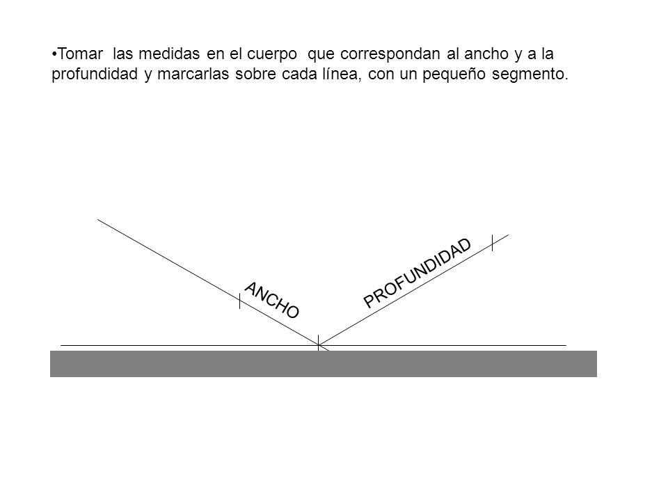 Tomar las medidas en el cuerpo que correspondan al ancho y a la profundidad y marcarlas sobre cada línea, con un pequeño segmento.