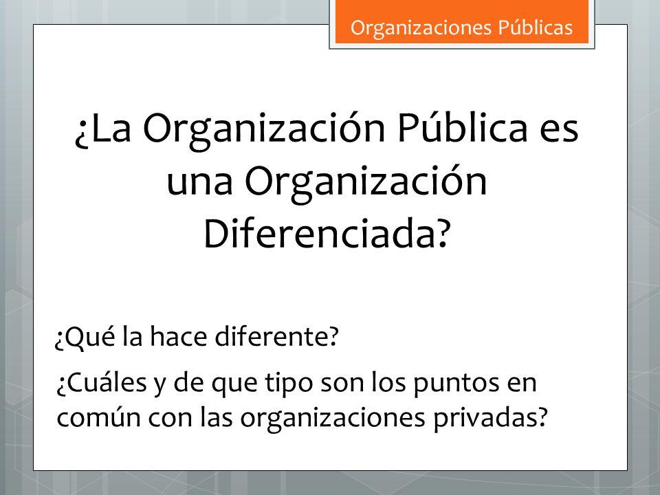¿La Organización Pública es una Organización Diferenciada? ¿Qué la hace diferente? ¿Cuáles y de que tipo son los puntos en común con las organizacione