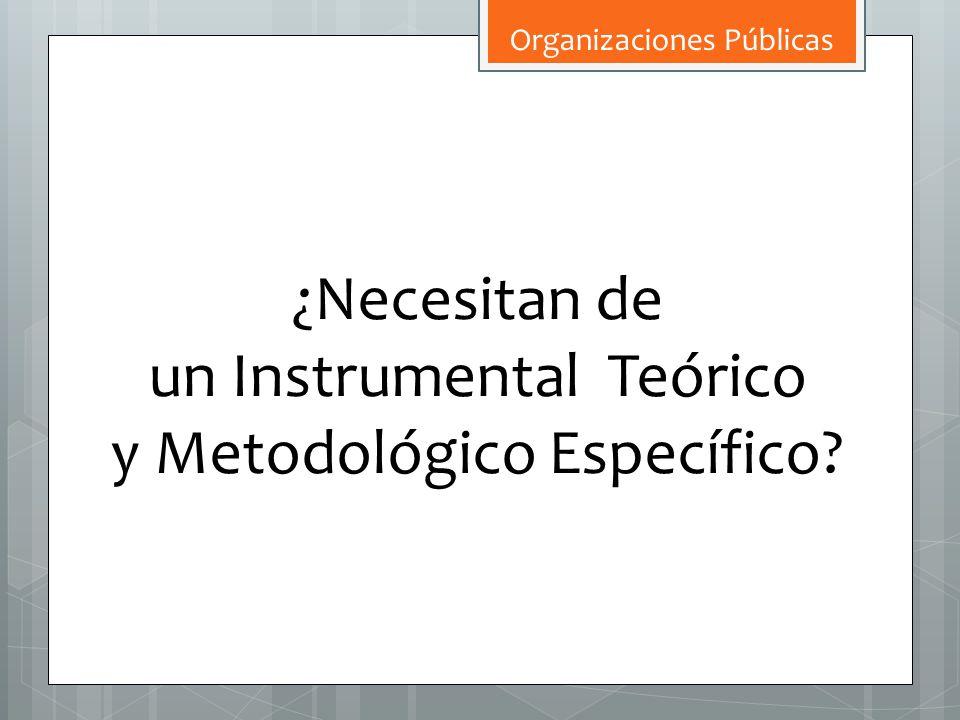 ¿Necesitan de un Instrumental Teórico y Metodológico Específico?