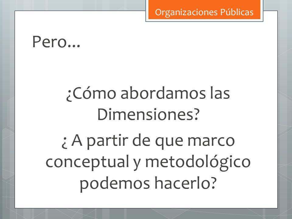Pero... ¿Cómo abordamos las Dimensiones? ¿ A partir de que marco conceptual y metodológico podemos hacerlo? Organizaciones Públicas