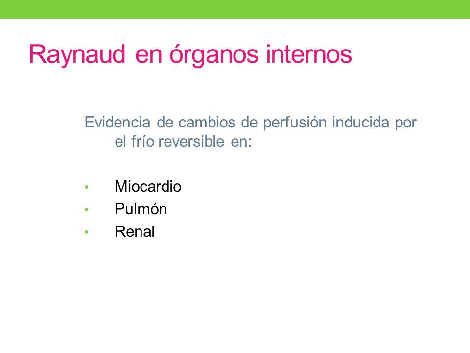 Raynaud en órganos internos Evidencia de cambios de perfusión inducida por el frío reversible en: Miocardio Pulmón Renal