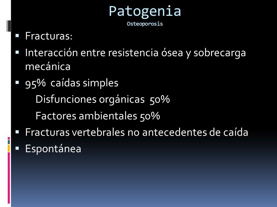 Patogenia Osteoporosis Fracturas: Interacción entre resistencia ósea y sobrecarga mecánica 95% caídas simples Disfunciones orgánicas 50% Factores ambientales 50% Fracturas vertebrales no antecedentes de caída Espontánea