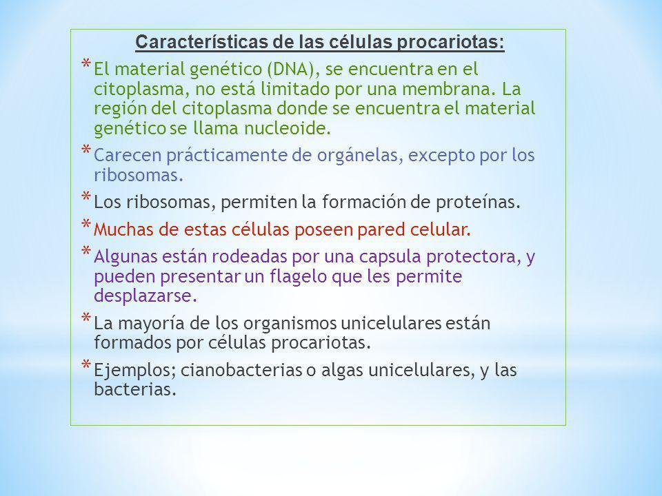 Características de las células procariotas: * El material genético (DNA), se encuentra en el citoplasma, no está limitado por una membrana. La región