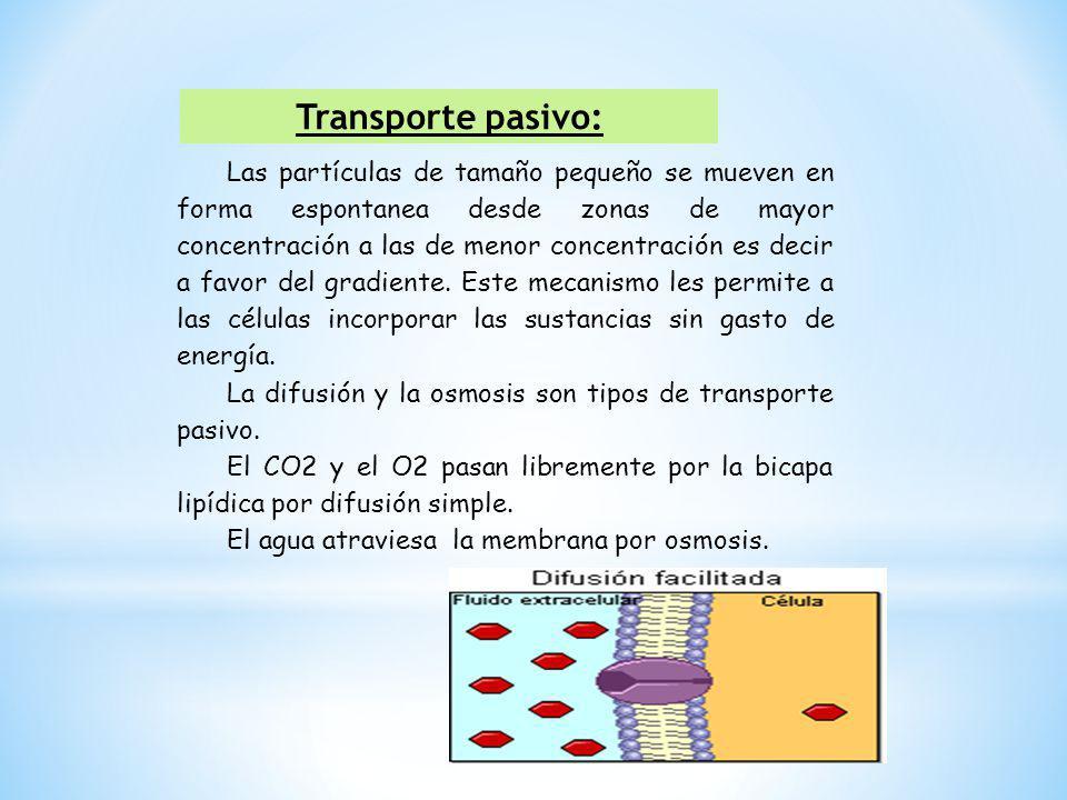 Transporte pasivo: Las partículas de tamaño pequeño se mueven en forma espontanea desde zonas de mayor concentración a las de menor concentración es d