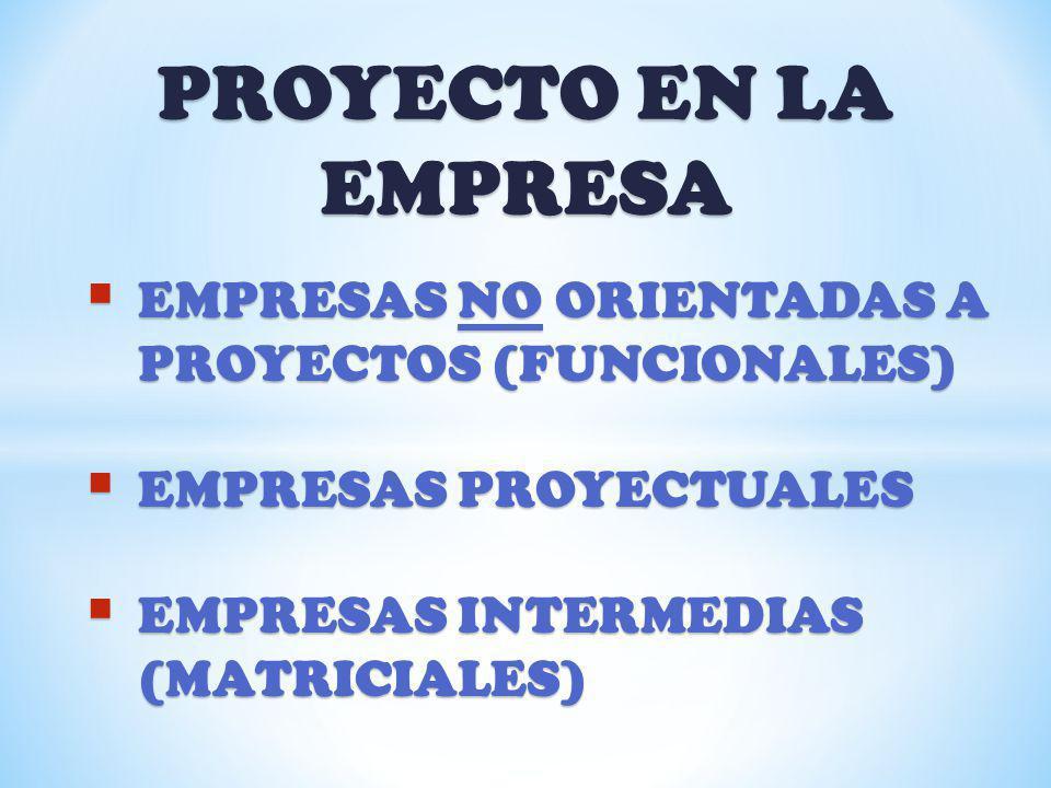 PROYECTO EN LA EMPRESA EMPRESAS NO ORIENTADAS A PROYECTOS (FUNCIONALES) EMPRESAS NO ORIENTADAS A PROYECTOS (FUNCIONALES) EMPRESAS PROYECTUALES EMPRESA