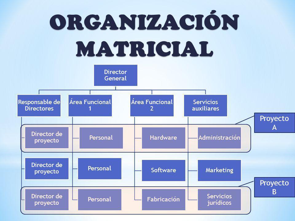 ORGANIZACIÓN MATRICIAL Director General Responsable de Directores Director de proyecto Área Funcional 1 Personal Área Funcional 2 Hardware Software Fa