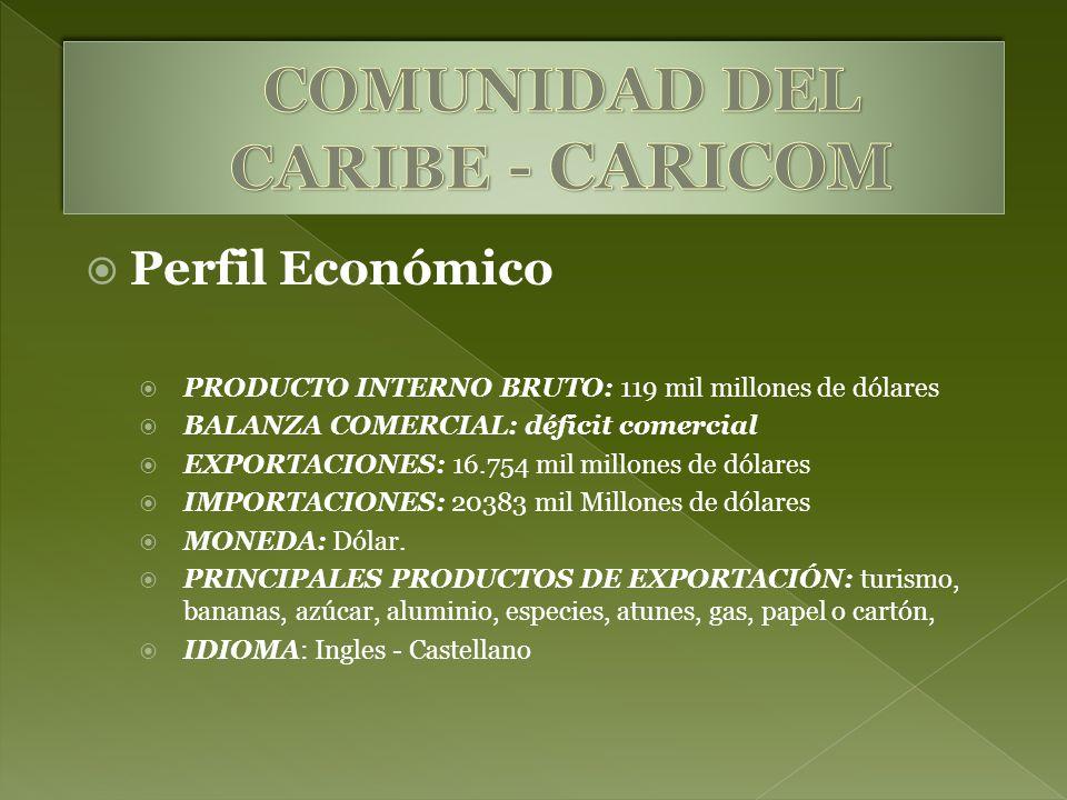 Perfil Económico PRODUCTO INTERNO BRUTO: 119 mil millones de dólares BALANZA COMERCIAL: déficit comercial EXPORTACIONES: 16.754 mil millones de dólares IMPORTACIONES: 20383 mil Millones de dólares MONEDA: Dólar.