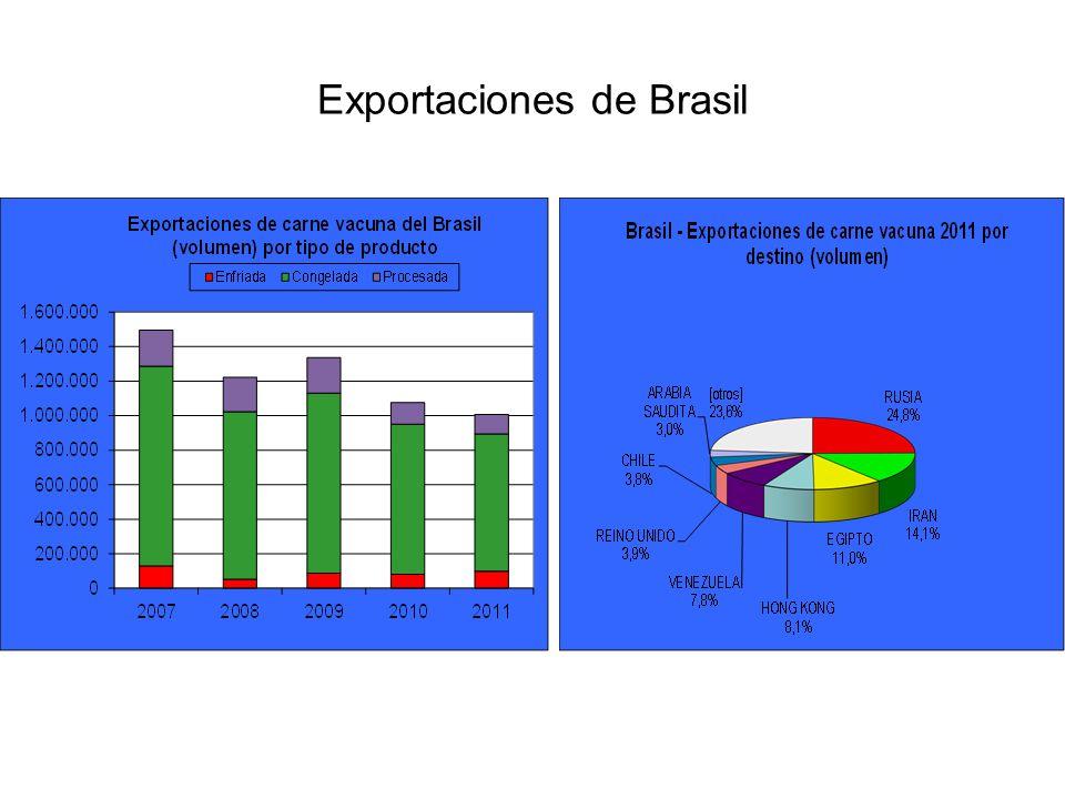 El principal destino para la carne brasileña durante 2011 fue la Federación Rusa, que adquirió un volumen cercano a 250 mil toneladas peso producto.