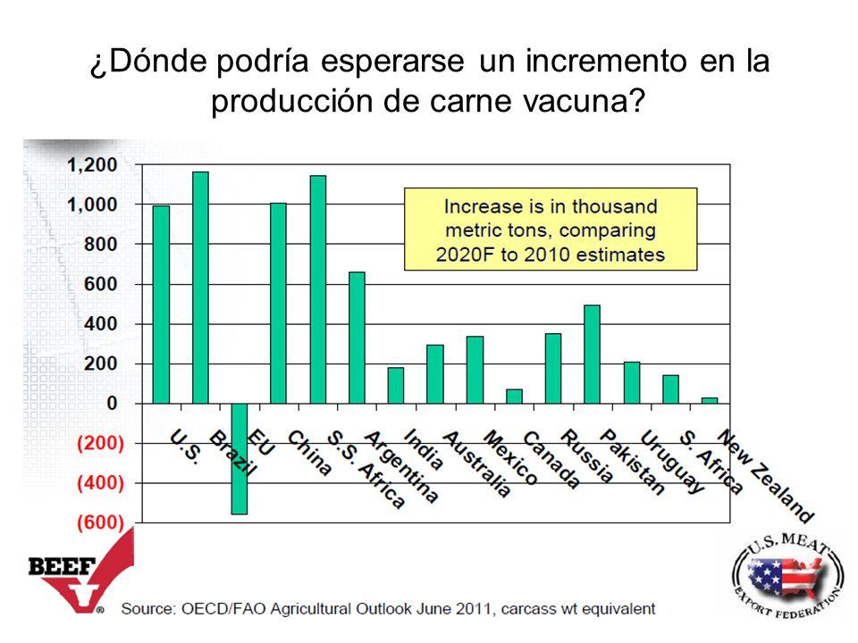 ¿Dónde podría esperarse un incremento en la producción de carne vacuna?