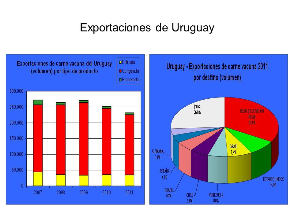 El principal destino para la carne uruguaya durante 2011 fue la Federación Rusa, que adquirió un volumen cercano a 77,2 mil toneladas peso producto.