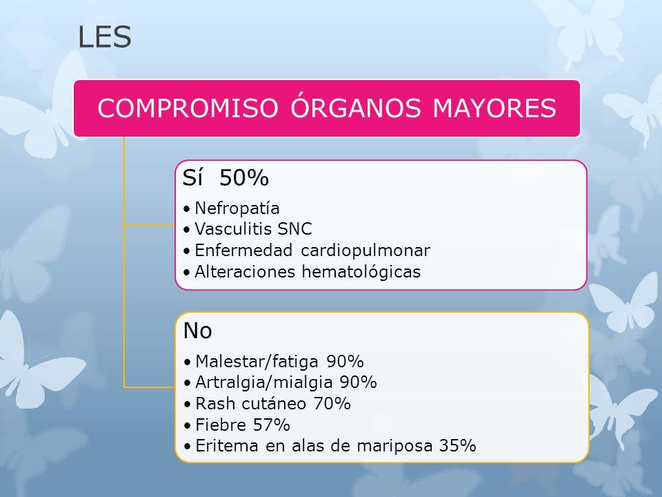 LES COMPROMISO ÓRGANOS MAYORES Sí 50% Nefropatía Vasculitis SNC Enfermedad cardiopulmonar Alteraciones hematológicas No Malestar/fatiga 90% Artralgia/