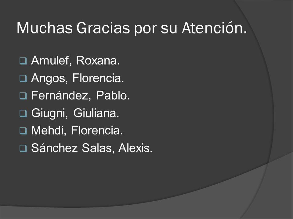 Muchas Gracias por su Atención. Amulef, Roxana. Angos, Florencia. Fernández, Pablo. Giugni, Giuliana. Mehdi, Florencia. Sánchez Salas, Alexis.