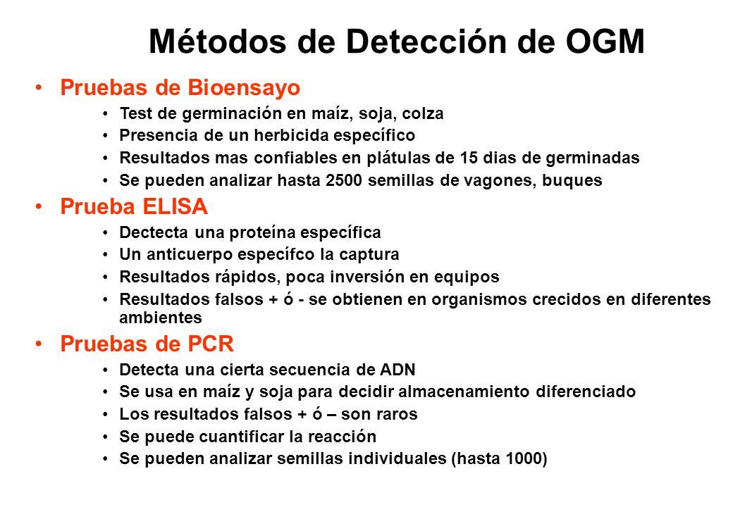Métodos de Detección de OGM Pruebas de Bioensayo Test de germinación en maíz, soja, colza Presencia de un herbicida específico Resultados mas confiabl