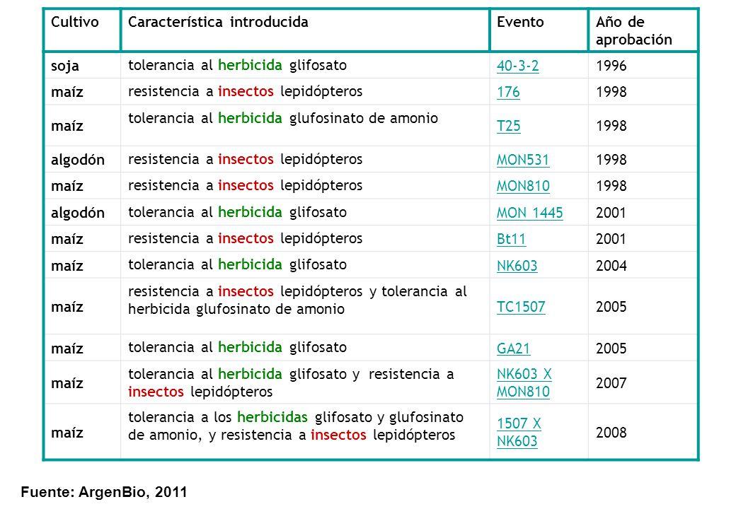 CultivoCaracterística introducidaEventoAño de aprobación soja tolerancia al herbicida glifosato 40-3-21996 maíz resistencia a insectos lepidópteros 17
