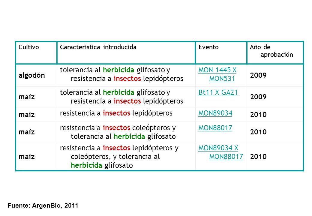 CultivoCaracterística introducidaEventoAño de aprobación algodón tolerancia al herbicida glifosato y resistencia a insectos lepidópteros MON 1445 X MO