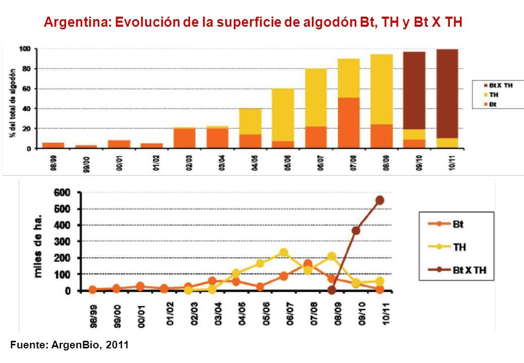 Fuente: ArgenBio, 2011 Argentina: Evolución de la superficie de algodón Bt, TH y Bt X TH
