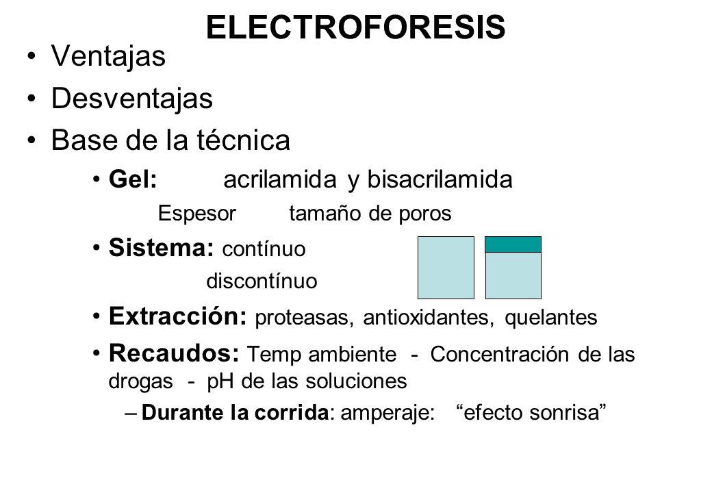 ELECTROFORESIS Ventajas Desventajas Base de la técnica Gel: acrilamida y bisacrilamida Espesortamaño de poros Sistema: contínuo discontínuo Extracción