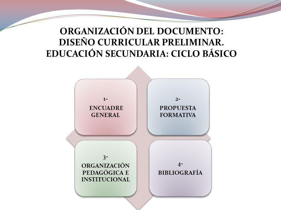 1- ENCUADRE GENERAL 2- PROPUESTA FORMATIVA 3- ORGANIZACIÓN PEDAGÓGICA E INSTITUCIONAL 4- BIBLIOGRAFÍA ORGANIZACIÓN DEL DOCUMENTO: DISEÑO CURRICULAR PRELIMINAR.