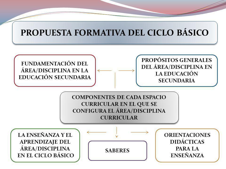 PROPUESTA FORMATIVA DEL CICLO BÁSICO COMPONENTES DE CADA ESPACIO CURRICULAR EN EL QUE SE CONFIGURA EL ÁREA/DISCIPLINA CURRICULAR PROPÓSITOS GENERALES DEL ÁREA/DISCIPLINA EN LA EDUCACIÓN SECUNDARIA FUNDAMENTACIÓN DEL ÁREA/DISCIPLINA EN LA EDUCACIÓN SECUNDARIA SABERES LA ENSEÑANZA Y EL APRENDIZAJE DEL ÁREA/DISCIPLINA EN EL CICLO BÁSICO ORIENTACIONES DIDÁCTICAS PARA LA ENSEÑANZA