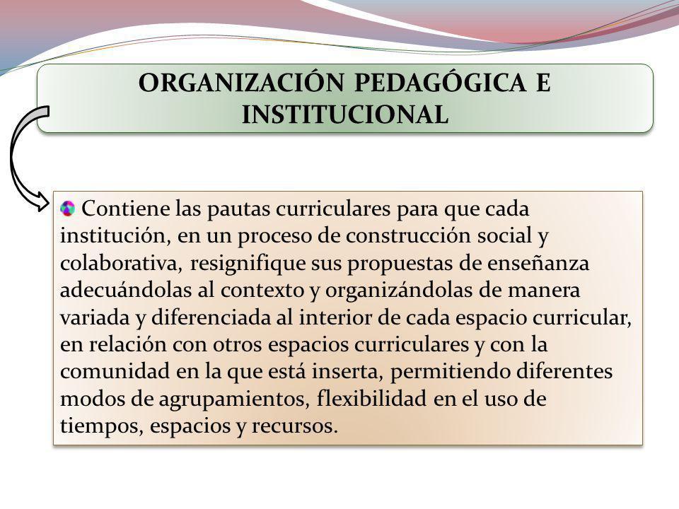 ORGANIZACIÓN PEDAGÓGICA E INSTITUCIONAL Contiene las pautas curriculares para que cada institución, en un proceso de construcción social y colaborativ