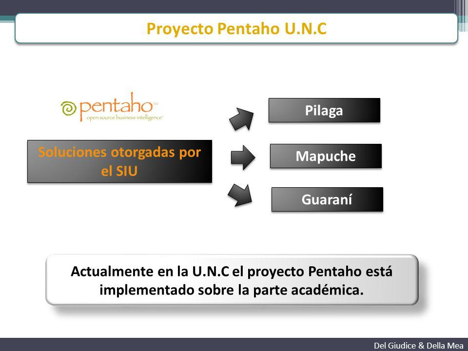 Cubos de Guaraní implementados - Proyecto Pentaho U.N.C Del Giudice & Della Mea 02_RendimientoAcademico 03_Procedencia 05_AlumnosAraucano