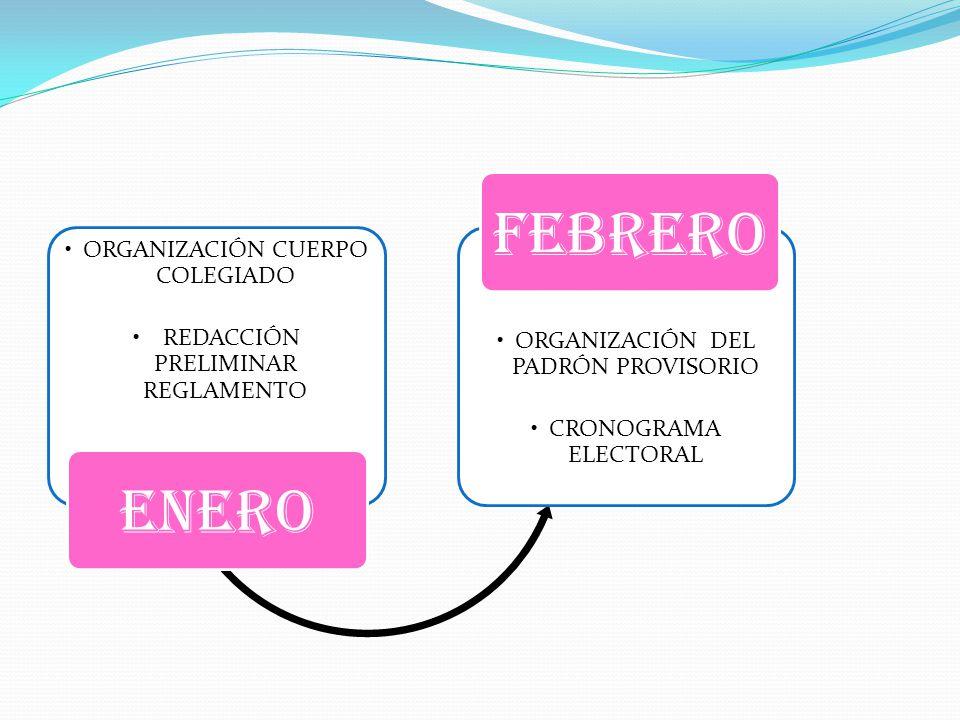 ORGANIZACIÓN CUERPO COLEGIADO REDACCIÓN PRELIMINAR REGLAMENTO ENERO ORGANIZACIÓN DEL PADRÓN PROVISORIO CRONOGRAMA ELECTORAL FEBRERO