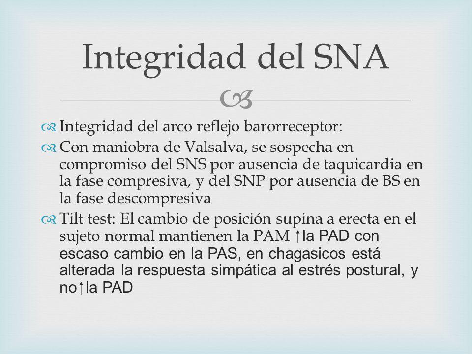 Integridad del SNA Integridad del arco reflejo barorreceptor: Con maniobra de Valsalva, se sospecha en compromiso del SNS por ausencia de taquicardia en la fase compresiva, y del SNP por ausencia de BS en la fase descompresiva Tilt test: El cambio de posición supina a erecta en el sujeto normal mantienen la PAM la PAD con escaso cambio en la PAS, en chagasicos está alterada la respuesta simpática al estrés postural, y no la PAD