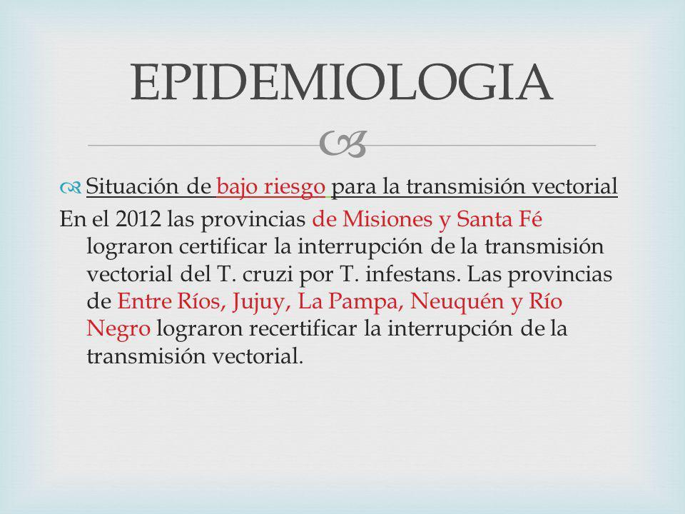 Un trabajo de Andrade de Brasil, señala asimismo que el tratamiento con BZL durante 60 días elimina la infección en más del 60% de los niños con infección crónica.* *Andrade AL, Martelli CM, Oliveira RM, y col.