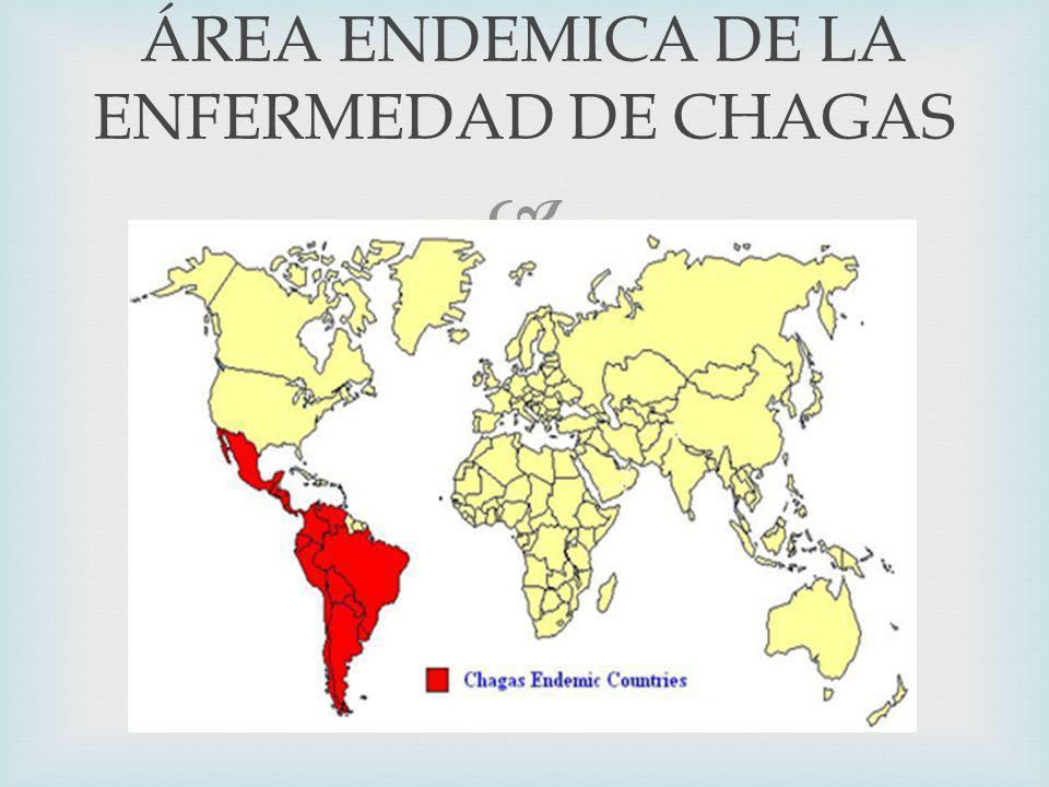 ÁREA ENDEMICA DE LA ENFERMEDAD DE CHAGAS