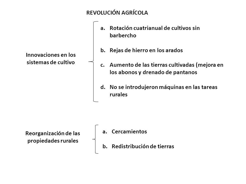 REVOLUCIÓN AGRÍCOLA Innovaciones en los sistemas de cultivo a.Rotación cuatrianual de cultivos sin barbercho b.Rejas de hierro en los arados c.Aumento