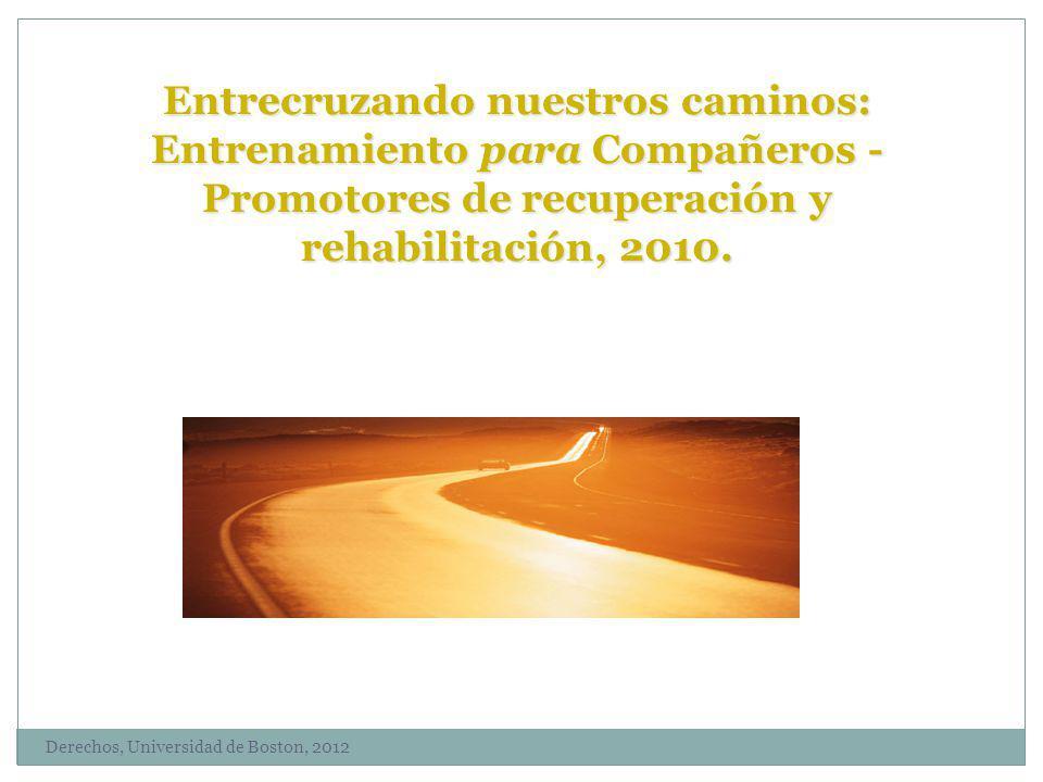 Entrecruzando nuestros caminos: Entrenamiento para Compañeros - Promotores de recuperación y rehabilitación, 2010.