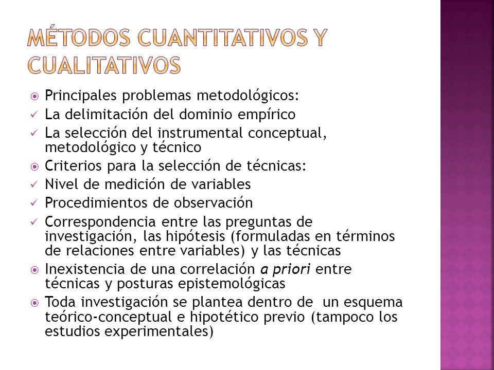 Principales problemas metodológicos: La delimitación del dominio empírico La selección del instrumental conceptual, metodológico y técnico Criterios p