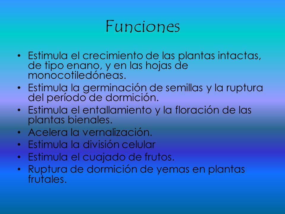 Funciones Estimula el crecimiento de las plantas intactas, de tipo enano, y en las hojas de monocotiledóneas. Estimula la germinación de semillas y la