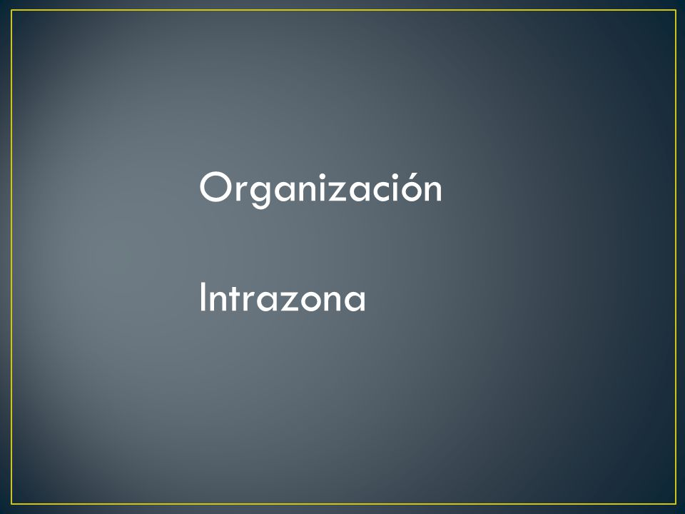 Organización Intrazona