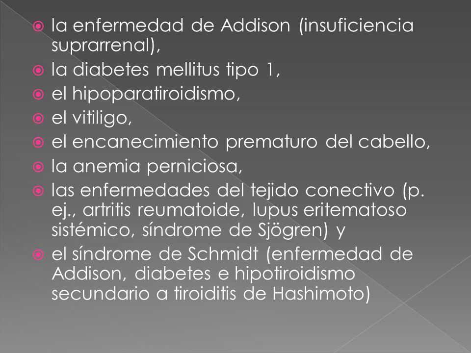 la enfermedad de Addison (insuficiencia suprarrenal), la diabetes mellitus tipo 1, el hipoparatiroidismo, el vitiligo, el encanecimiento prematuro del