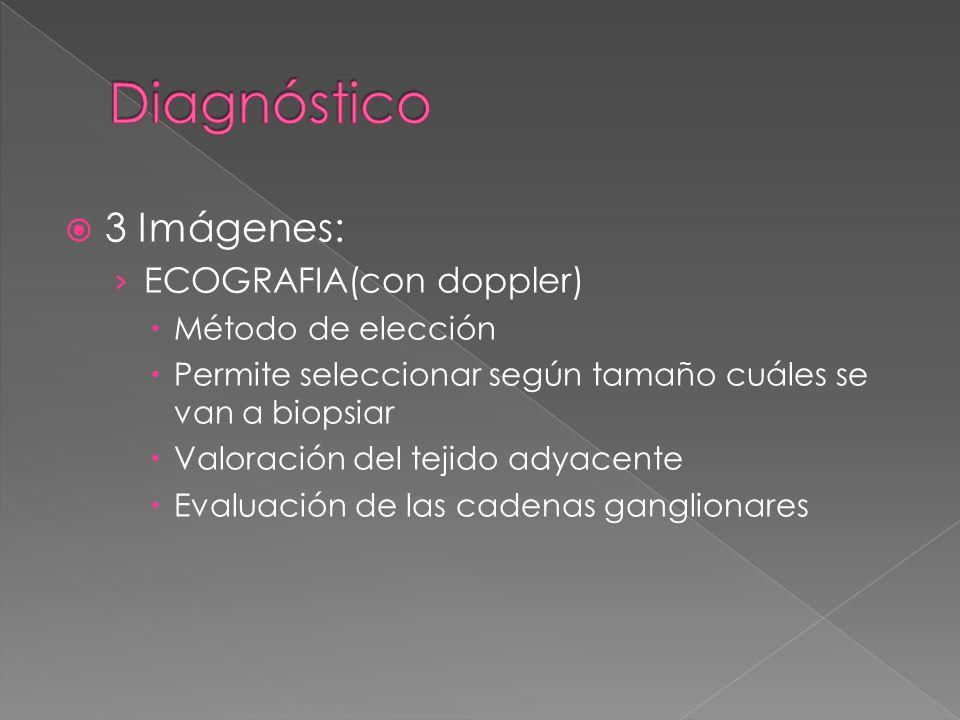 3 Imágenes: ECOGRAFIA(con doppler) Método de elección Permite seleccionar según tamaño cuáles se van a biopsiar Valoración del tejido adyacente Evalua