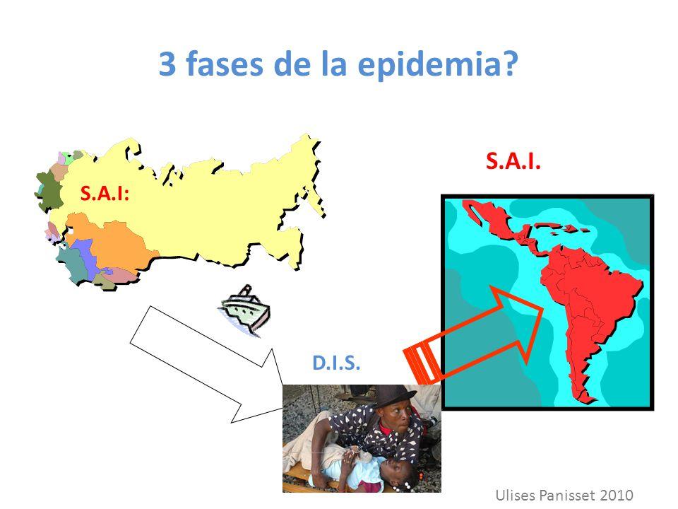 3 fases de la epidemia? S.A.I: D.I.S. S.A.I. Ulises Panisset 2010