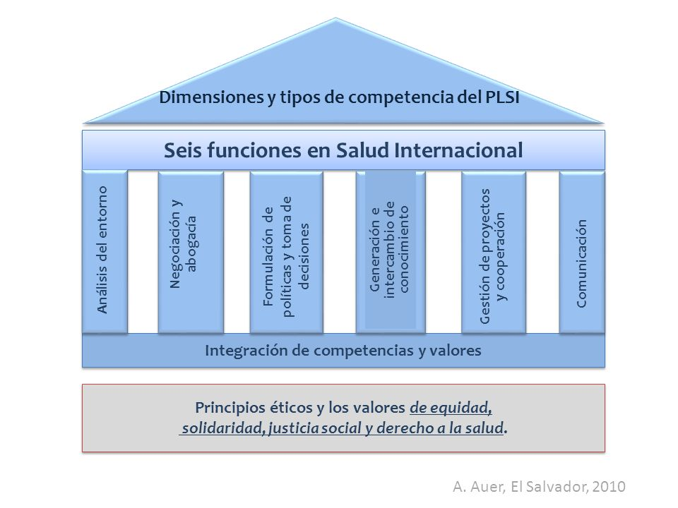 Dimensiones y tipos de competencia del PLSI Seis funciones en Salud Internacional Integración de competencias y valores Principios éticos y los valores de equidad, solidaridad, justicia social y derecho a la salud.