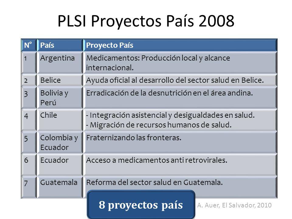 PLSI Proyectos País 2008 8 proyectos país A. Auer, El Salvador, 2010