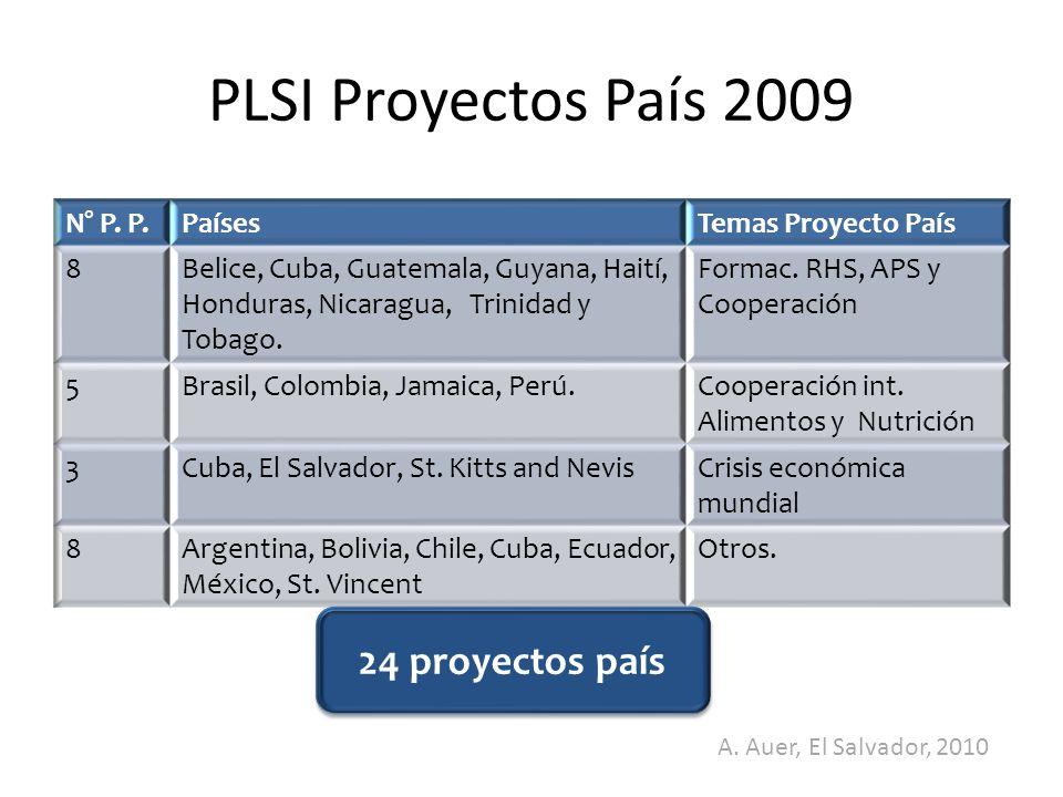 PLSI Proyectos País 2009 24 proyectos país A. Auer, El Salvador, 2010