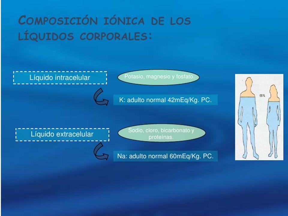 Balance de agua K+ corporal 50 mEq/kg peso Eliminación Renal Pulmón Heces 8O% TCP ADH TUBO COLECTOR Ingestión Diaria 50-100 mEq/ día Osmolaridad y osmorrecepción Na, CL, HCO3, ALBUMINA K+ 2% 3,5 – 5 mEq/L K+, ESTERES fosfato Agua y sed ADH K+ 140 mEq/L Acidosis Insulina Catecolamina Aldosterona Na+ K+ ATPasa