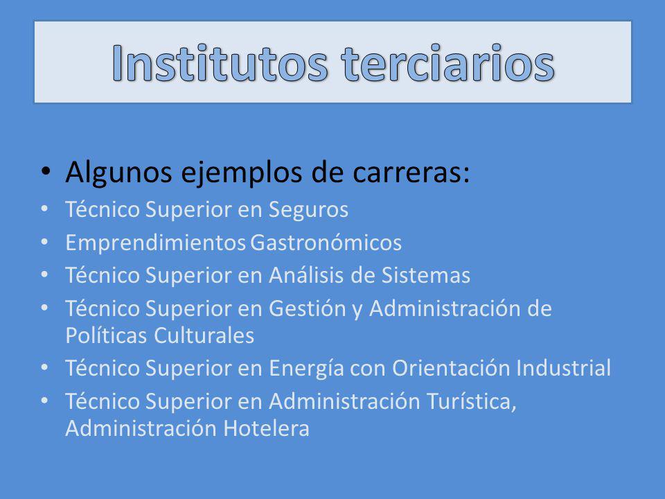 Algunos ejemplos de carreras: Técnico Superior en Seguros Emprendimientos Gastronómicos Técnico Superior en Análisis de Sistemas Técnico Superior en G