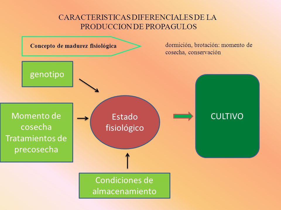 técnicas de liberación Incidencia de enfermedades sistémicas